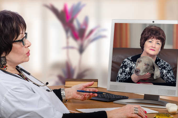 Vet Telemedicine: What You Need To Know About Virtual Vet Appointments