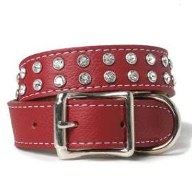 best-dog-collars-tuscan-leather-diamonds