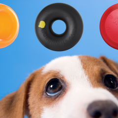 15 Indestructible Dog Toys For Heavy Chewers