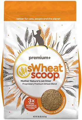 Swheat Scoop Unscented Premium+ All-Nature's Cat Litter