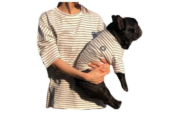 dog and human striped tshirt matching