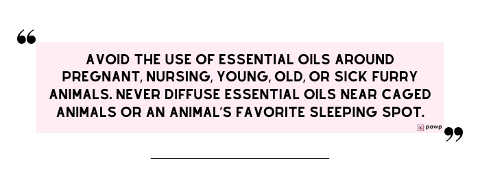 pawp-quote card-avoid-essential-oils