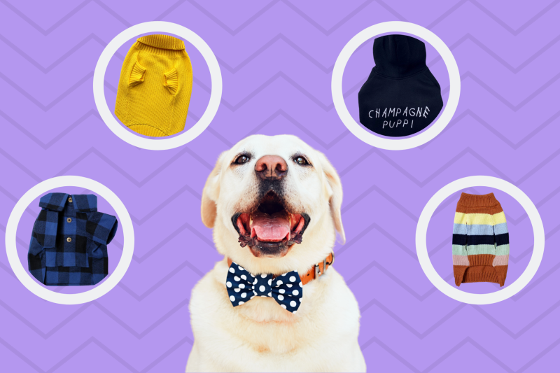 13 Matching Outfits For You And Your Dog To Twin In
