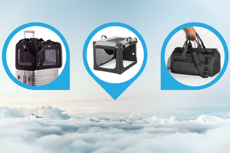 13 Best Dog Crates & Carriers For Airline Travel