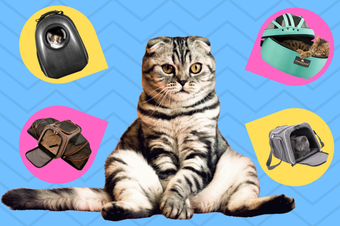 The Best Cat Carriers Of 2020 For Airline & Everyday Travel