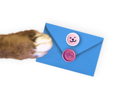 Paw with envelope