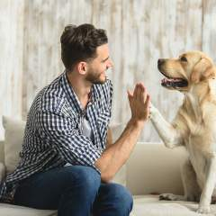 Dog Owners Are Healthier, Less Stressed, And Better Looking