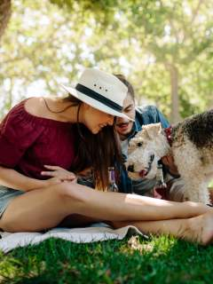How To Socialize Your Dog Before Heading To The Dog Park