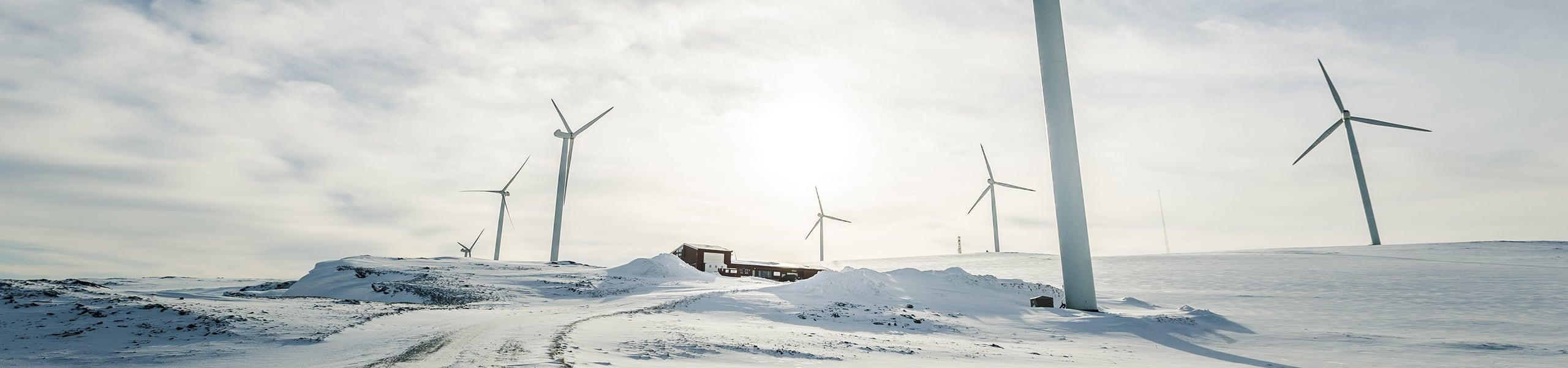 Blog Image: In Defense of Wind