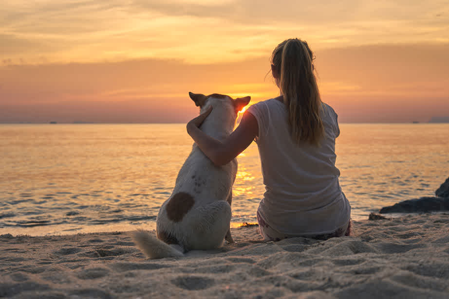 Sunset Woman on Beach with Dog