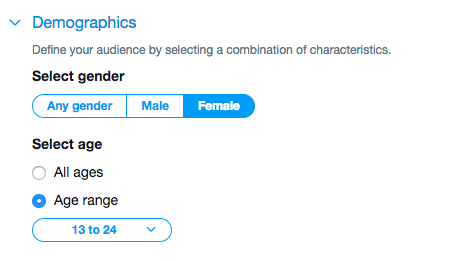 Twitter ad targeting demographics
