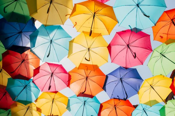 Cash flow forecast in the form of umbrellas
