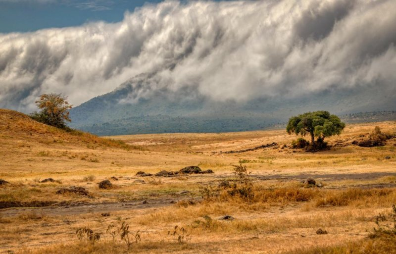 Ngorongoro Crater clouds and dry landscape