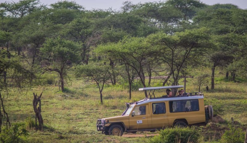 Safari vehicle in the Serengeti, what is the Serengeti famous for?