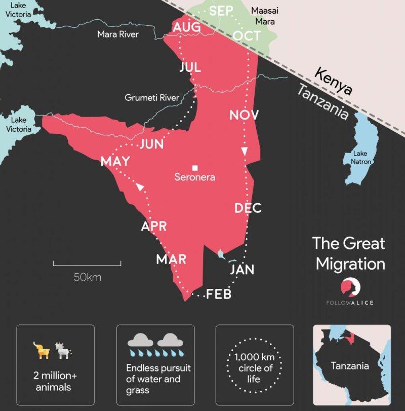Map of Great Wildlife Migration Serengeti National Park Tanzania