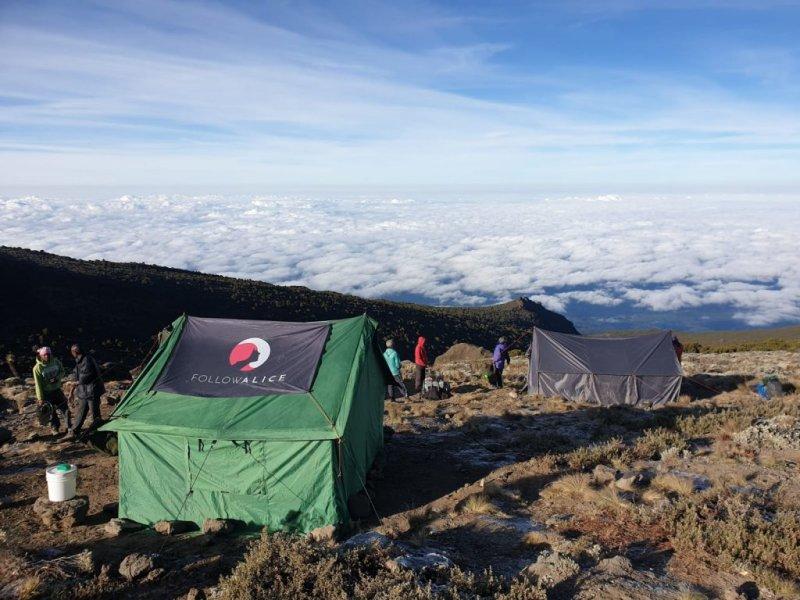 tent Kilimanjarpo camp