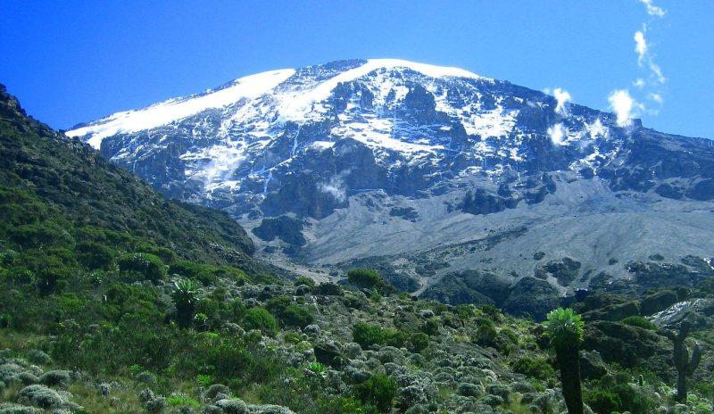 Kilimanjaro peak as seen from moorland zone