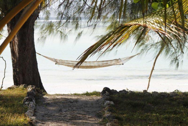 hammock Zanzibar