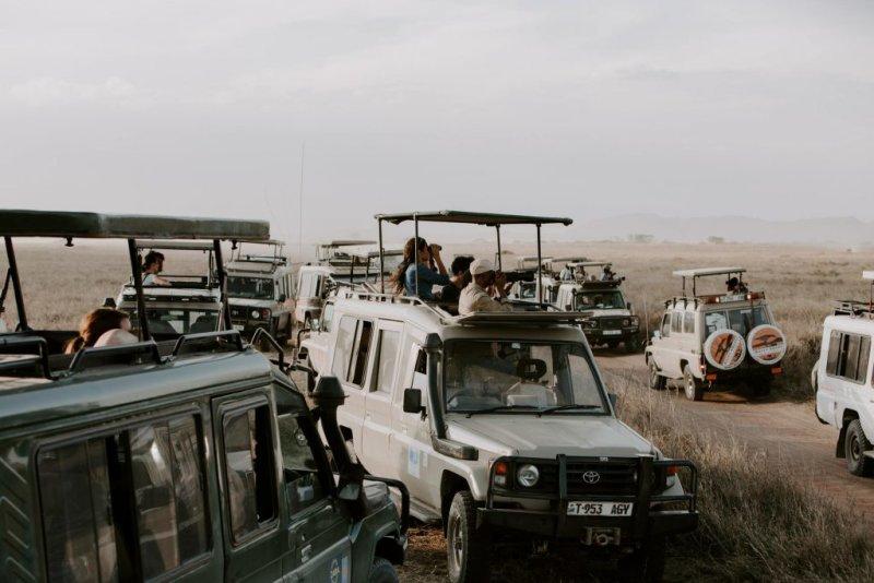 safari vehicles Serengeti