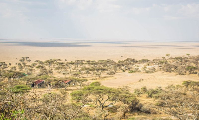 Overlooking-serengeti-national-park-with-ranger-house