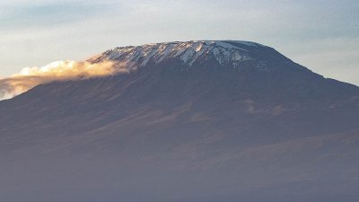 Mount Kilimanjaro seen from a distance with animals in foreground