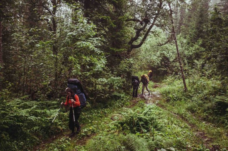 Trekking in the mud in a rainforest