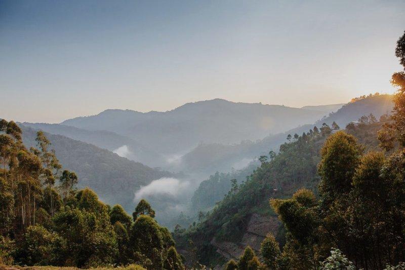 View of Bwindi Forest National Park, Uganda