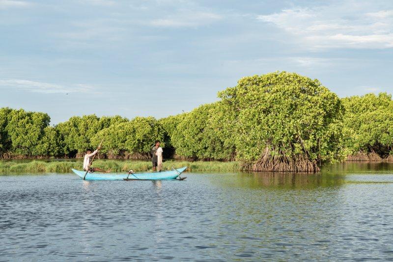 Sri Lanka lagoon safari in Pottuvil