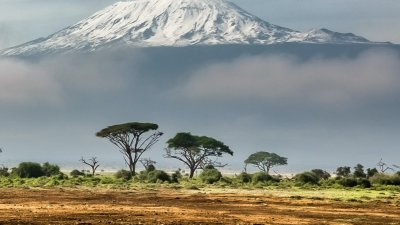 Mt Kilimanjaro with lots of snow seen from a distance with subtropical landscape in foreground and clouds obscuring lower half of mountain