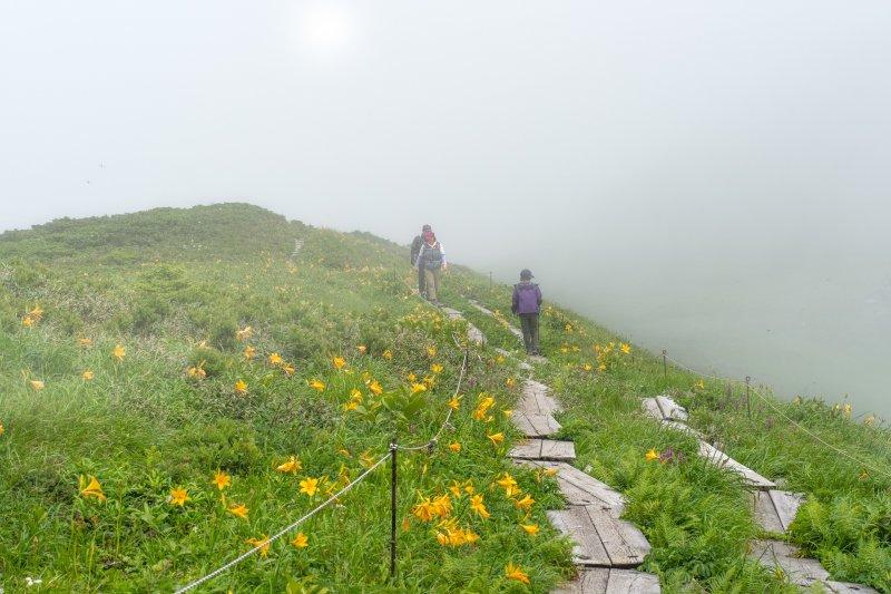 Trekkers walking across field with mist