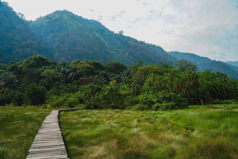 Wooden boardwalk inside Semuliki National Park in western Uganda   Top 20 things to do in Uganda