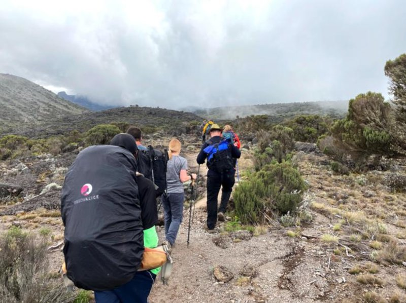 Kilimanjaro trekkers, physical preparation