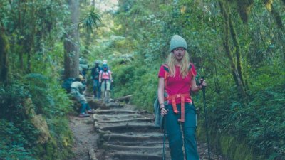 Young female trekker in red shirt and holding trekking poles walks down a stepped forest path on Kilimanjaro