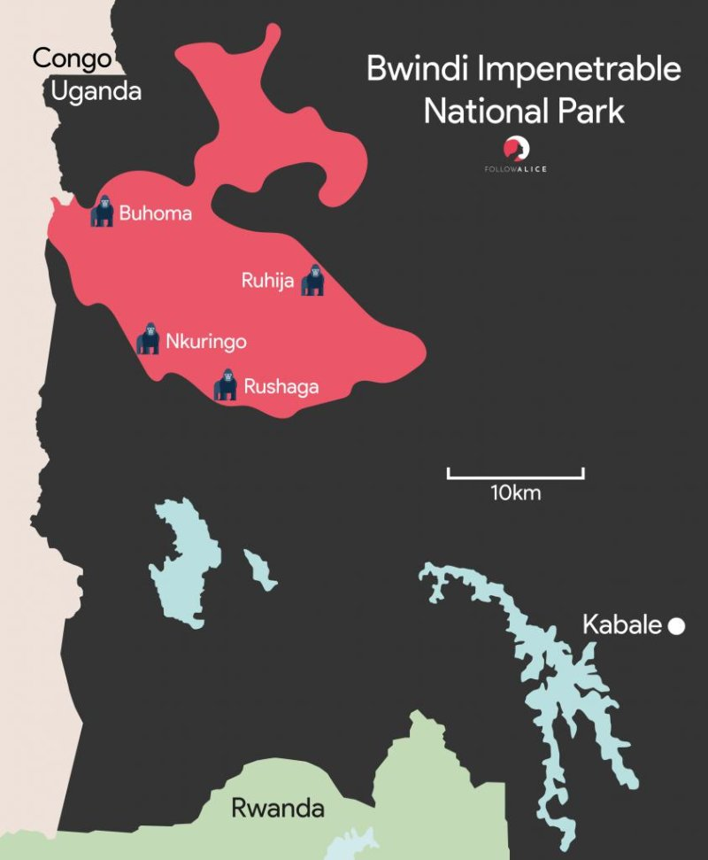 Follow Alice map of the different sections of Bwindi Impenetrable National Park in western Uganda