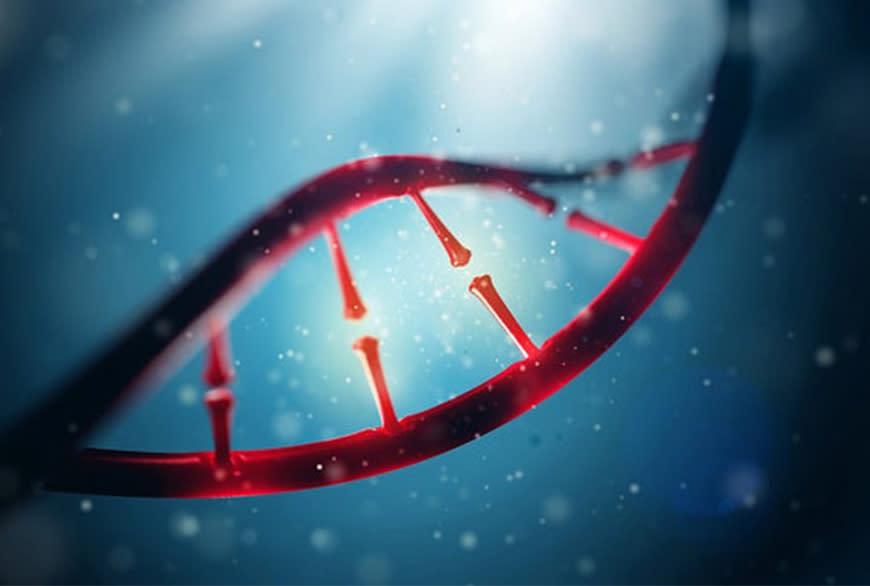 genomicshero