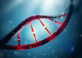 genomicscard