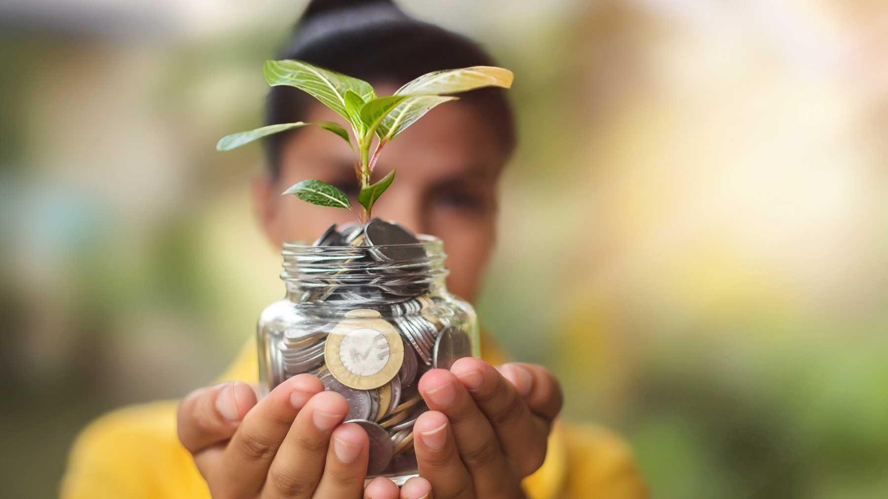 Rituales Con Plantas Para Atraer El Dinero Y El Amor Mamaslatinas Com