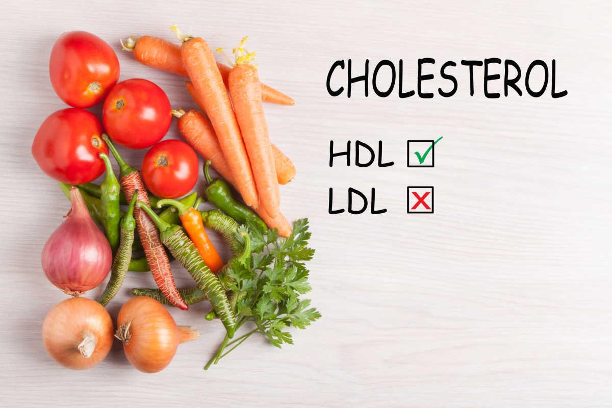 bom colesterol