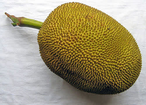 Jackfruit 5 Ways This Superfood Is Great For Weight Loss Mamaslatinas Com