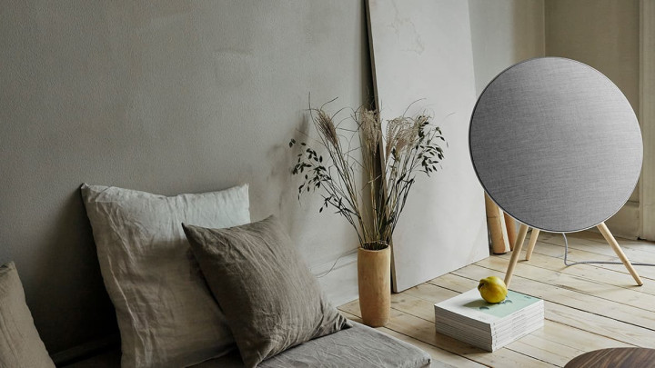 Beoplay A9 speakers front full next to plant