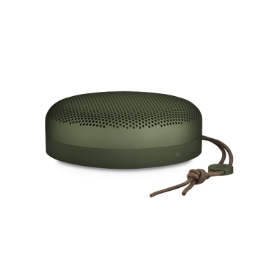 Beoplay A1 Moss Green 1