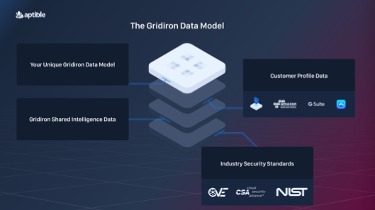 The Gridiron Data Model integrates information about your business, everything Aptible has learned about protecting sensitive data across hundreds of customers, and industry-wide security best practices.