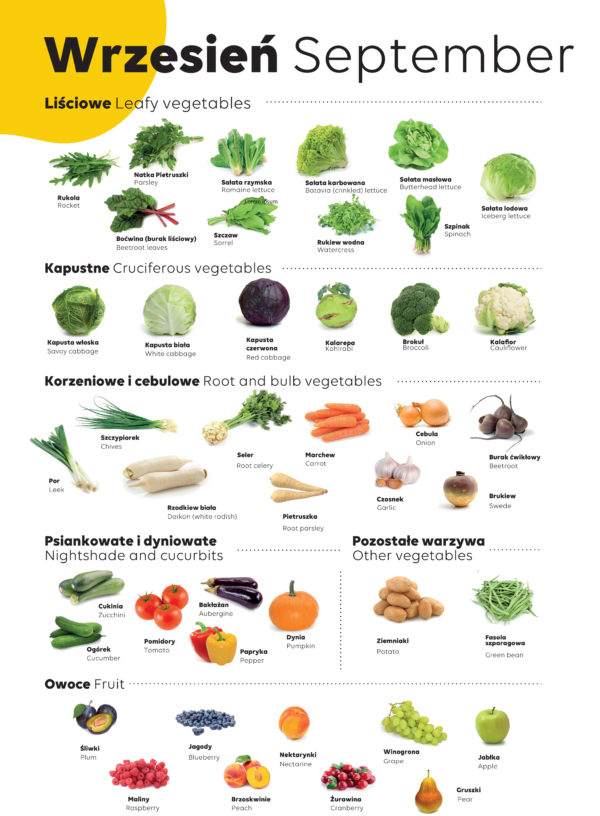 Sustainable eating habits: Seasonal veggie calendar