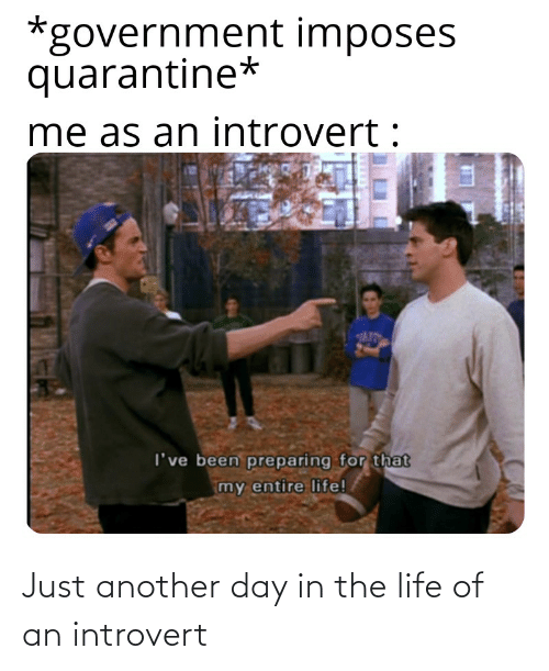 Just another day in the life of an introvert