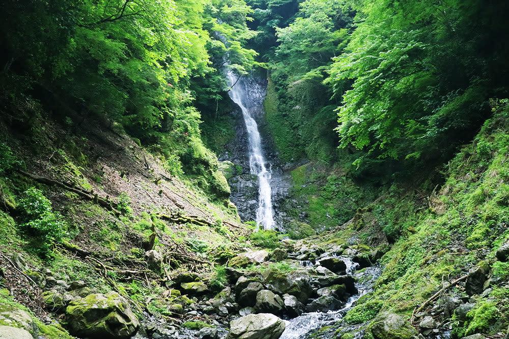 有田川町 さがり滝