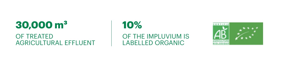 10% of the impluvium is labelled organic
