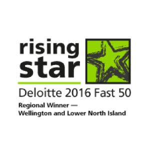 Flick Electric Co. - Rising Star Fast 50 2016