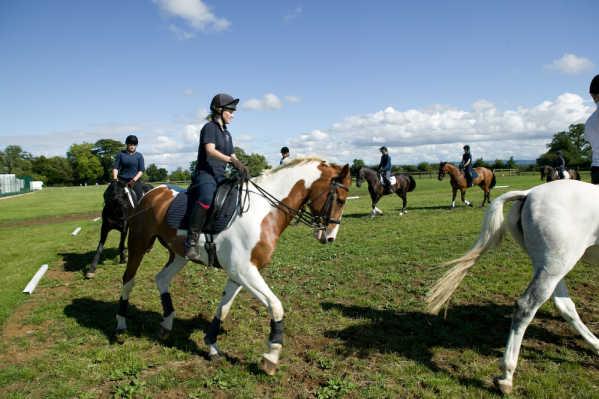 Die Schüler reiten auf einem Reitplatz der Schule auf eigenen Pferden und auf Pferden der Schule