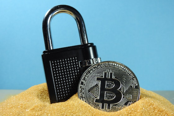 Cover Image for A Low-Risk Inflation Hedge? The Case for Bitcoin as Security Against Financial Downturn