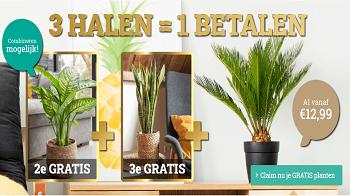 Actie: 3 Halen = 1 Betalen op alle planten